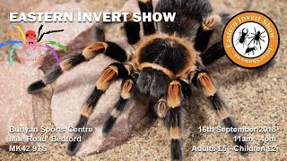 Download Invert Shows UK - Eastern Invertebrate Show Video