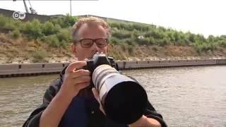 Download Bajo Rin: de Düsseldorf a Emmerich | Destino Alemania Video