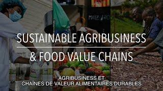 Download FAO Collection Politiques: Agribusiness et chaînes de valeur alimentaires durables (sous-titrée) Video