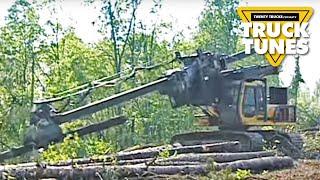 Download Kids Truck Video - Delimber Video