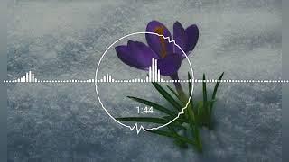 Download Hoa Lại Nở 2 - PCGL [By Đức Nguyễn]♪♫ Video