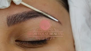 Download Microblading Process step by step Video