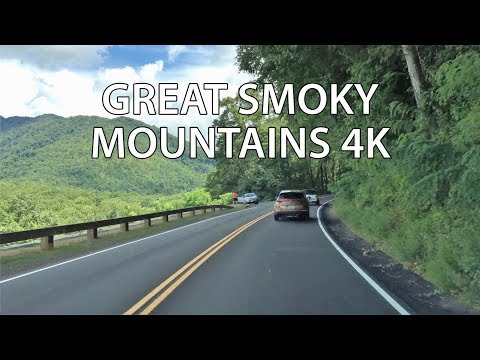 Drive 4K - America's Most Popular Park - USA