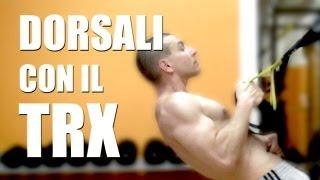 Download TRX e Allenamento Dorsali - Personal Trainer #64 Video