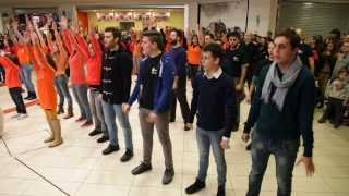 Download ″I Will Survive″ Vocal Flash Mob Video