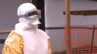 Download WHO: Fighting the Ebola outbreak in Sierra Leone Video