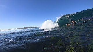 Download THIS REEF WAS PERFECT. We spent a day in PARADISE Video