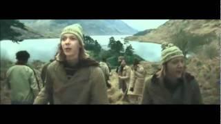 Download 20 scene divertenti della famiglia Weasley Video
