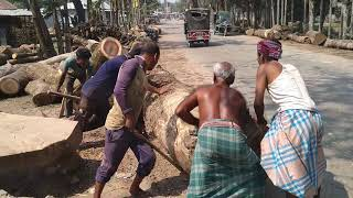 Download Tough! Very Dangerous and Tough Wood Cutting and Lifting by 10 Powerful Men in Saw Mill of Aisa Video