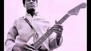 Download Jimmy Dawkins - Me, My Gitar and the Blues Video