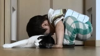 Download 2歳児がとらえた飼い猫むーの特徴 We are home! and Cat Welcomeow! Video