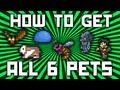 Download Terraria: How To Get ALL 6 Console Pets (Werewolf, Tiphia, Zombie, Guinea Pig, Bat, Slime) @demizegg Video