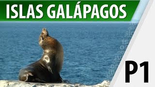Download Islas Galápagos / Lugares Turísticos / Parte 1 Video