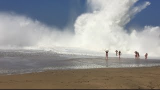 Download Giant Wave Crash Lumaha'i Beach in Kauai, Hawaii Video