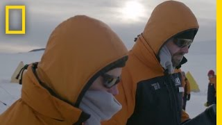 Download Setting Up Camp: A Day in the Life of a Scientist | Continent 7: Antarctica Video