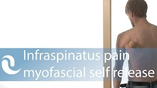 Download Infraspinatus pain & trigger points - myofascial self release Video