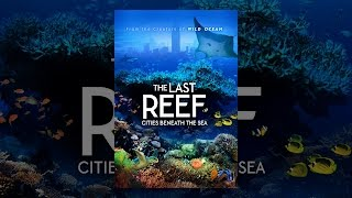 Download The Last Reef: Cities Beneath the Sea Video