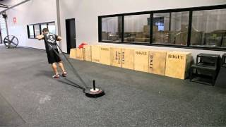 Download CrossFit - Training With Champions: Part 5 Video
