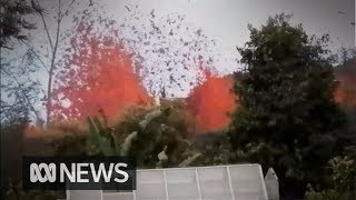 Download Hawaii resident goes home to find spewing lava in his backyard Video