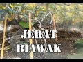 Download TOTORIAL jerat biawak part# 3/Berburu biawak Video