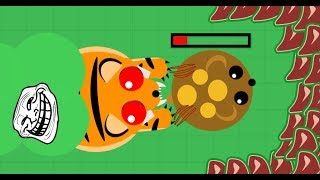 Download Mope.io // AND HIS NAME IS .... // TIGER TROLLING // Mope.io Bests moments Video