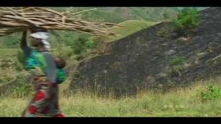 Download Deforestation Video