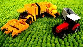 Download Развивающие игры - Машины-помощники - Комбайн, трактор, погрузчик Video