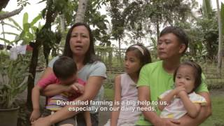 Download Diversified Integrated Farming System (DIFS): A Way of Life Video