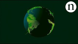 Download How many trees are there in the world? Video