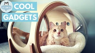 Download 12 Useful Gadgets For Cats Video