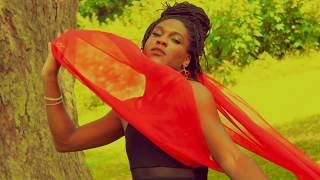 Download Qaadir Howard- Bloodied And A Mess Video