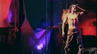 Download Skinny Puppy | The Choke live @ Doomsday | hq audio Video