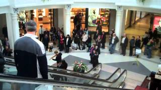 Download An Orchestra Hit-and-Run at the Fashion Mall Video