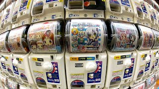 Download Gachapon: Capsule Toy Adventure in Akihabara ★ ONLY in JAPAN Video