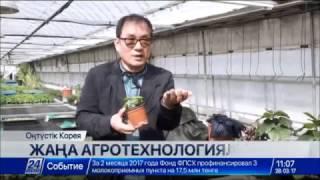 Download Қорея ғалымдары қазақстандық фермерлермен тәжірибе бөлісуге әзір Video
