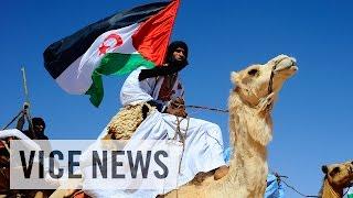 Download The Sahara's Forgotten War (Full Length) Video
