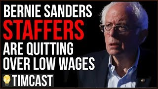 Download Bernie Sanders Staff Demand $15 Minimum Wage, Some Quit Over Low Wages Video