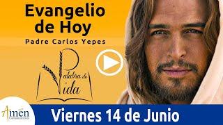 Download Evangelio de Hoy Viernes 14 de Junio de 2019 l Padre Carlos Yepes Video