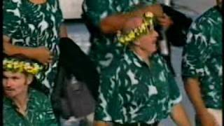 Download 2002 Manchester Commonwealth Games Opening Ceremony - Parade of Athletes (Part 2 of 6) Video