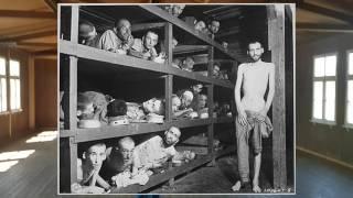 Download Mauthausen koncentrációs tábor 2017 Video