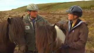 Download Icelandic Horses on Equitrekking Video