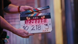 Download CATS - A Look Inside Video