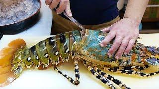 Download 日本路邊小吃 - $600美元 巨大彩虹龍蝦 生魚片 沖繩海鮮 Video