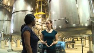 Download Chemical Engineer - Careers in Science and Engineering Video