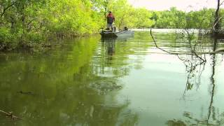 Download Small Boats Can Fish Big Too Video