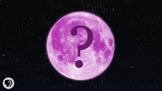Download What Color Is The Moon? Video