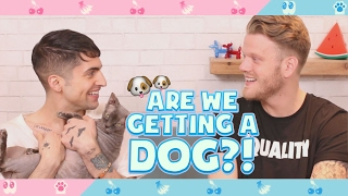 Download ARE WE GETTING A DOG?! Video