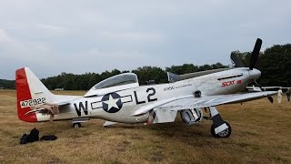 Download Flight in P51 Scat VII with Go Pro Cockpit View, Low Pass and Roll Video