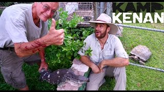 Download Tough Black Throated Monitor Lizard! Video