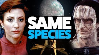 Download Cardassians and Bajorans are the SAME SPECIES (Star Trek theory) Video
